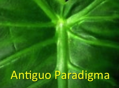 Antiguo_paradigma